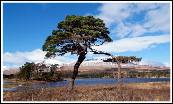 Loch Tulla by Scottishlandscapes