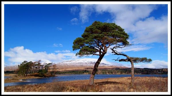Loch Tulla 2 by Scottishlandscapes