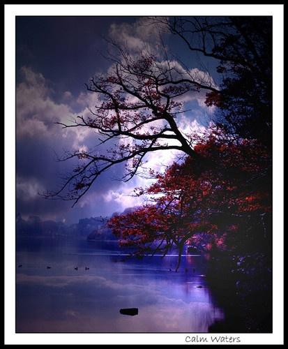 Calm Waters by chrissycj