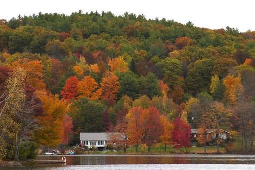 Colours of Fall 2 by saramalik
