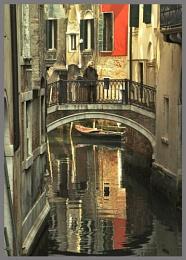 Venetian visitor