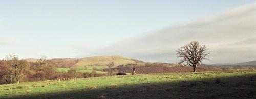 Abbey Cwm Hir by fredforsyth
