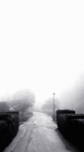 Misty Path by sbeck
