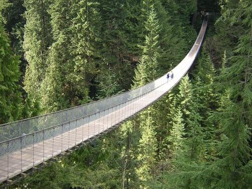 Capilano Susp Bridge by craignjulie