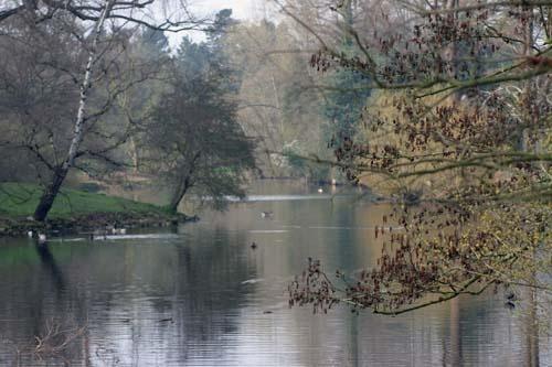 Lake at kew gardens by chrisskipp
