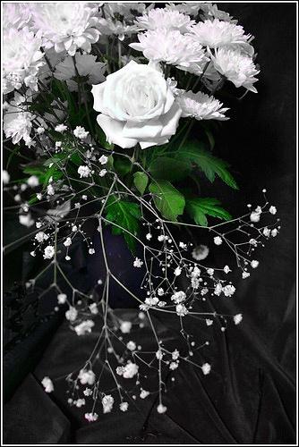 White by SuziBlue
