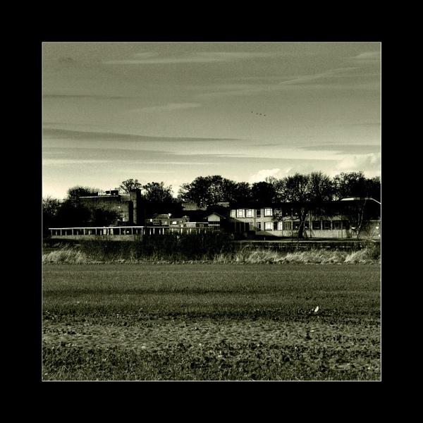 York by eskimo