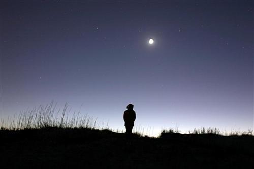 Moonlight Dune Daughter by fez