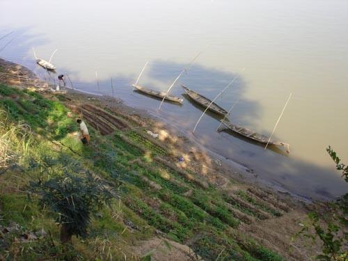 Lazy Boats on the Mekong by jsuter