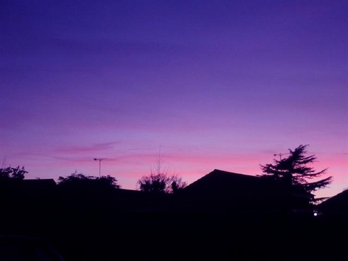 Purple sunset by catlover27