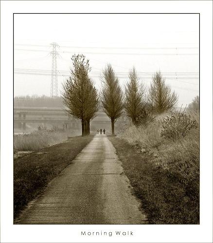 Morning Walk by sze4j