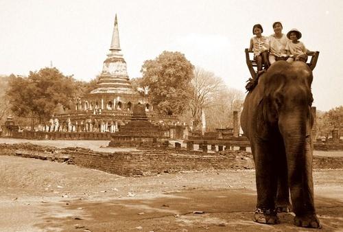 Elephant Ride by khanhnguyen