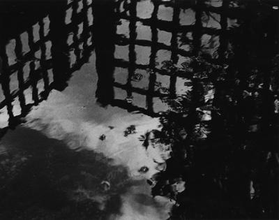 Pond reflection by stuleech