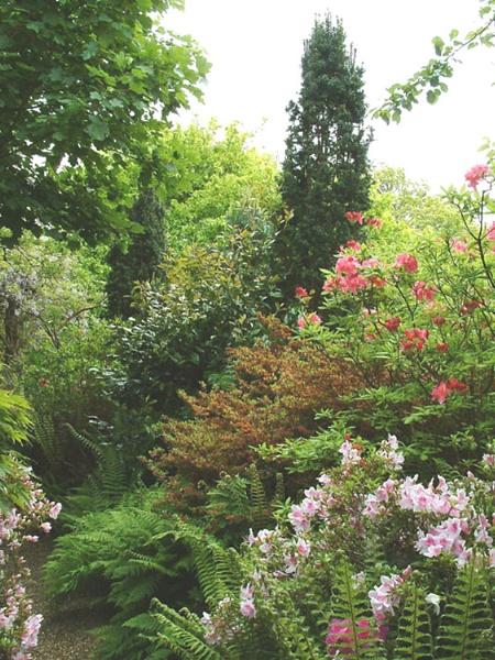 Garden view by alex.allen