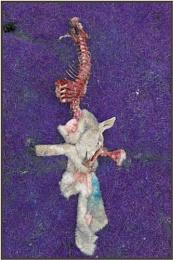 Sacrificial Lamb 2