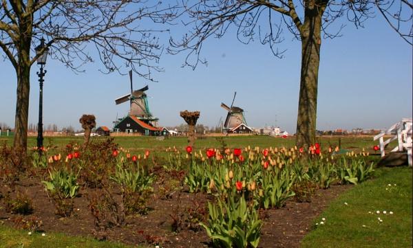 Preview Dutch Meet I by conrad