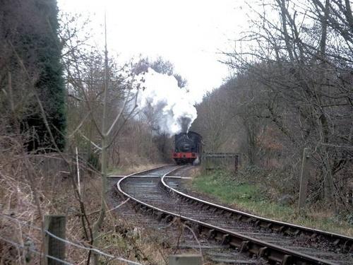 local steam railway by bradpete