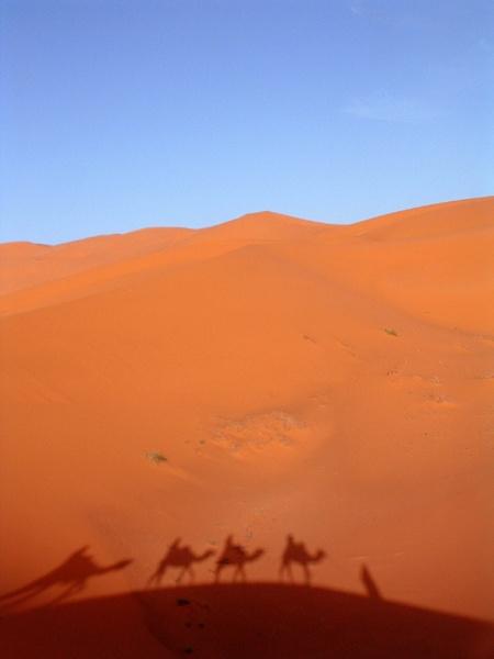 Moroccan Sahara by Joanie