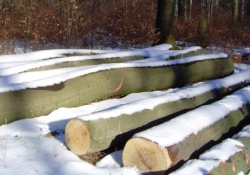 winter memories by Poziomka