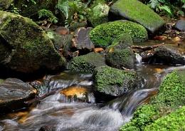 Bag Creek Falls