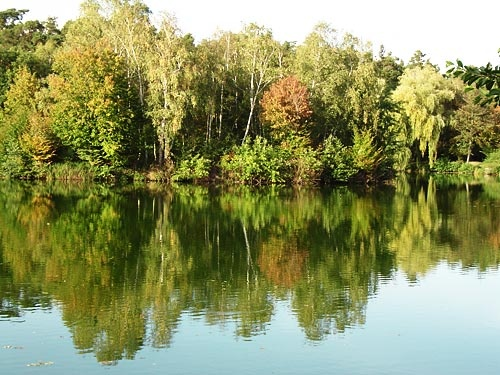 Tranquel Reflection by keppy