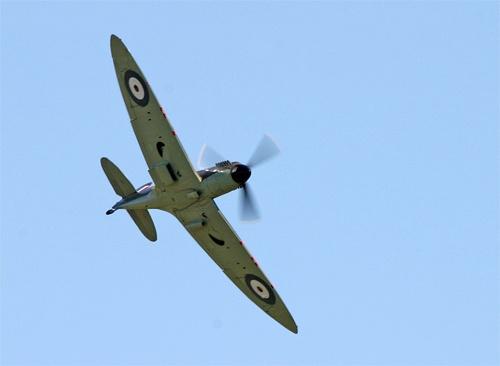 Spitfire! by big fella