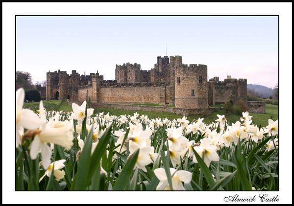Alnwick Castle by gillymot