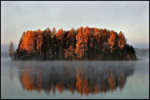 Misty morning by Jou©o