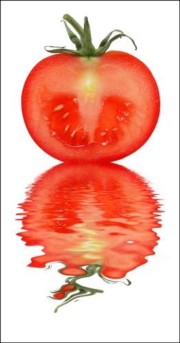 Tomato by ejtumman