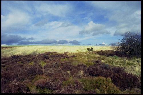 Plain Landscape by DannyD