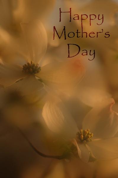 For all the Mom\'s by kjenn