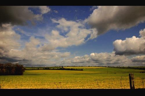 Dorset Colour by laurab