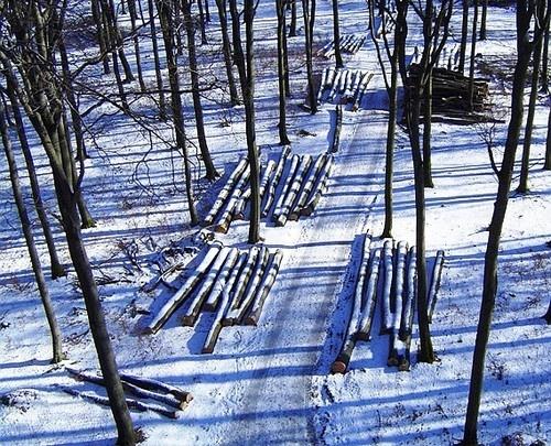winter memories 3 by Poziomka