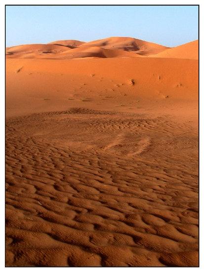 Sahara by Joanie