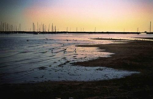 Beach by josie2879