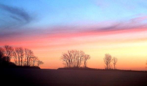 A Devon Early Morning. by Beardy