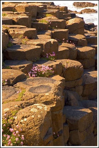 Steps! by mttmwilson