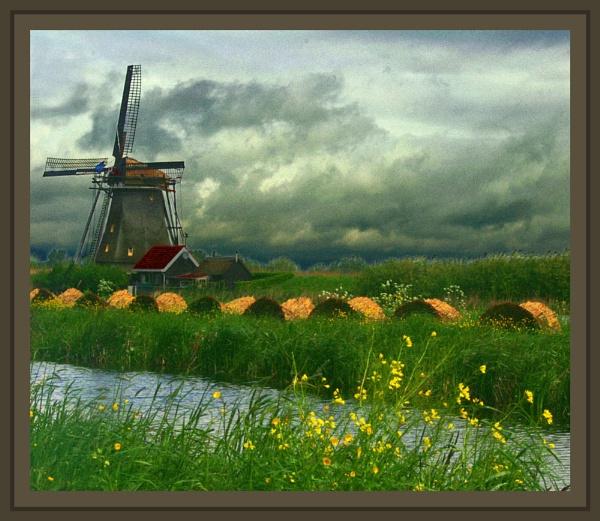 "My \""Monet\"" by conrad"