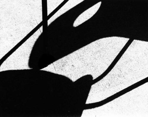 Abstract 5 by stuleech