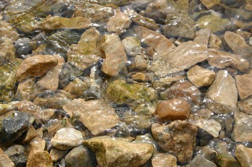 Pebbles(not the Flintstones)! by jany
