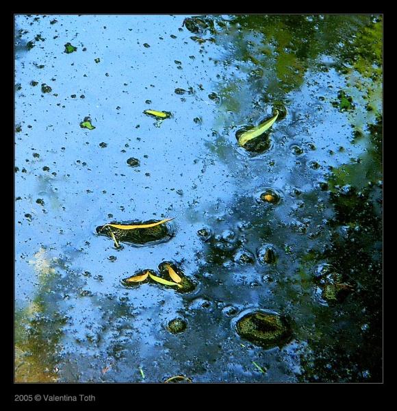 blue pond by vtoth