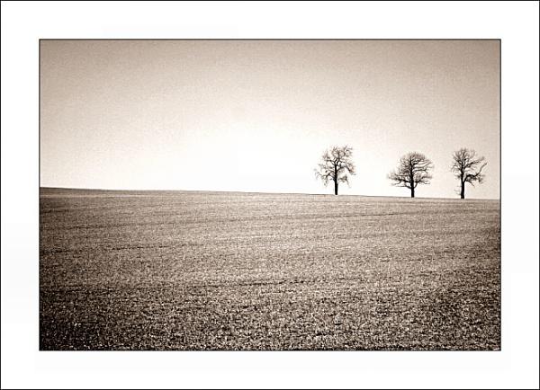 horizon trio by stuartsportraits