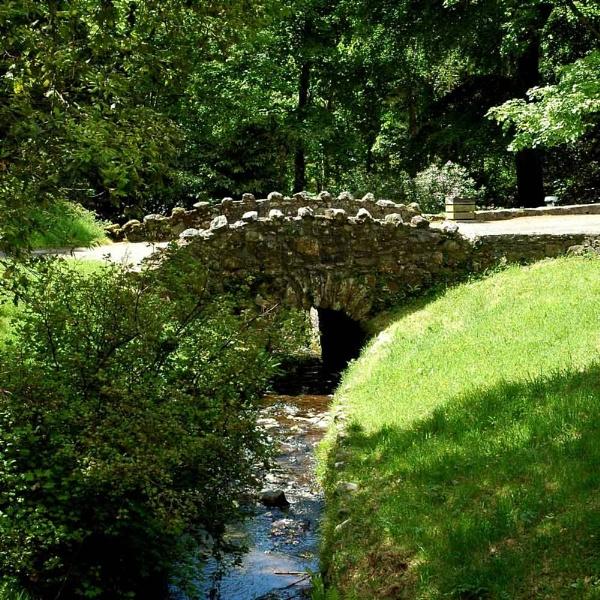 Wee Bridge by a11sus