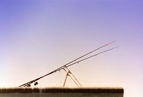FISHING LINES by magda_indigo