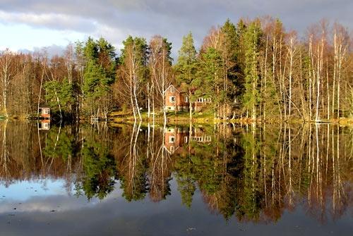 reflections by ojjo