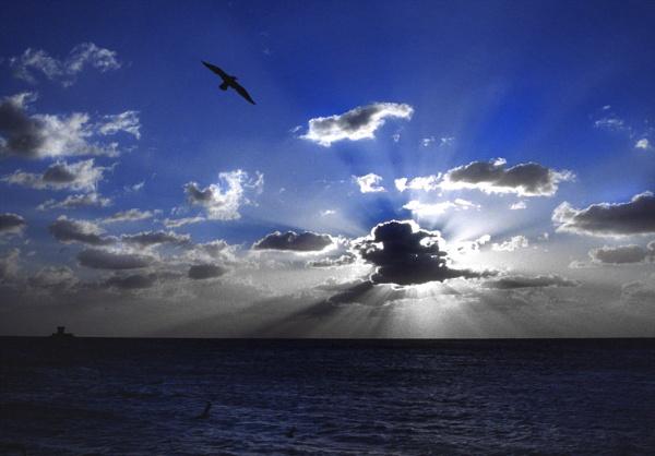 evening sky by scottingham