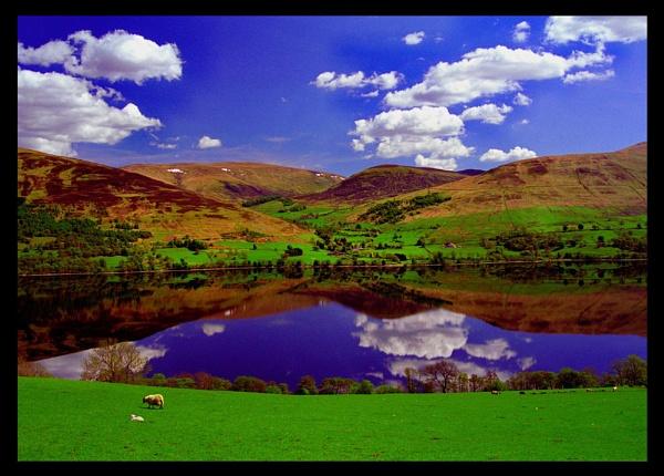 Scotland by scottingham