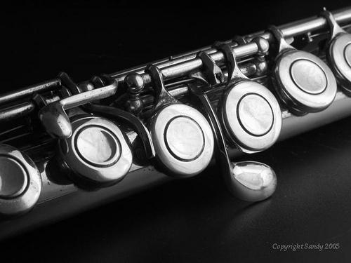 Flute by cameragirl