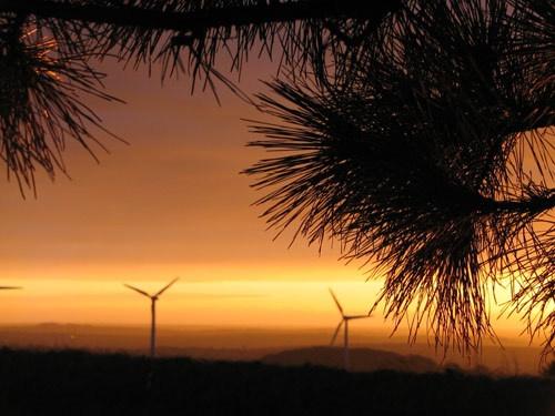 Windfarm by Marlin_owner