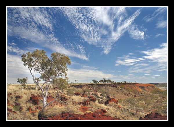 Outback by Carol_f